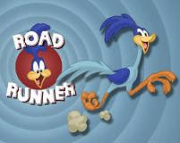Road Runner Show: http://bit.ly/roadrunneronhummingjays
